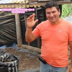 カフェインレスコーヒー ペルー [アラディノ・デルガド」 シティーロースト