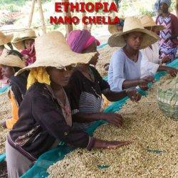 エチオピア 「ナノ・チャラ」 ミディアムロースト(200g)