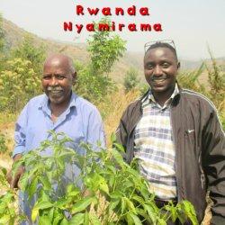 ルワンダ「ニャミラマ」シティーロースト(200g)