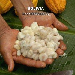 ローストカカオ豆 ボリビア(100g)