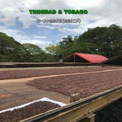 ローストカカオ豆 トリニダード・トバゴ(300g)