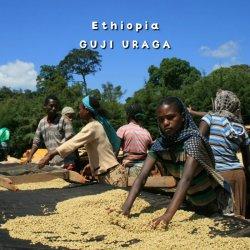 エチオピア「グジ ウラガ 」 シティーロースト(200g)