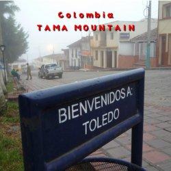 コロンビア タママウテン ハイロースト(200g)