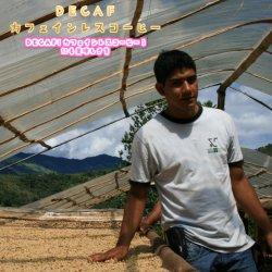 DECAF カフェインレスコーヒー ペルー 【ウィルダー・ガルシア】 シティーロースト(200g)