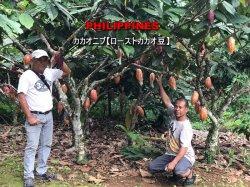 ローストカカオ豆【カカオニブ】 フィリピン(300g)