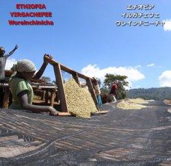 エチオピア イルガチェフェ 【ゲデブ】 ウレインチニーチャ シティロースト(200g)