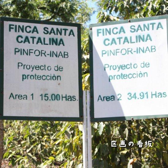 グァテマラ「サンタカタリーナ農園」GR Campament ミディアムロースト(200g)