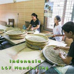 インドネシア 「LCFマンデリン」フレンチロースト(200g)