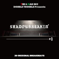 DOUBLE TROUBLE / SHADOWBREAKIN' 01