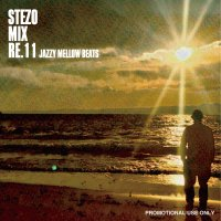 STEZO MIX RE.11