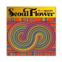 SEOUL FLOWER - DJ LIGHT
