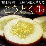 (常温)樹上完熟蜜入りりんご「葉とらずこうとく」【贈答用(小玉りんご)】約3kg(9〜12コ) [玉芳農園]※発送は11月下旬から