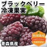 (冷凍)青森県産 ブラックベリー冷凍果実[樋口さん]