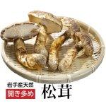 (冷蔵)岩手の天然松茸サイズ混合【開き】多め約200g【数量限定・お一人様1セットまで】