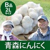 (常温)青森にんにくB品2Lサイズ[川村さん]※9月上旬から発送予定