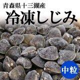 (冷凍)十三湖産 冷凍しじみ(中粒)1kg[トーサムグリーンパーク]※砂抜き不要