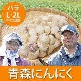 (常温)青森にんにくバラL(L大・2Lサイズ混合)[川村さん]※10月下旬から発送予定