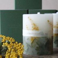 Botanical Candle ミモザ ボタニカル キャンドル(BOX入り)<br>YOAKEnoAKARI ヨアケノアカリ