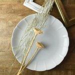 31cmマーガレットパーティー皿