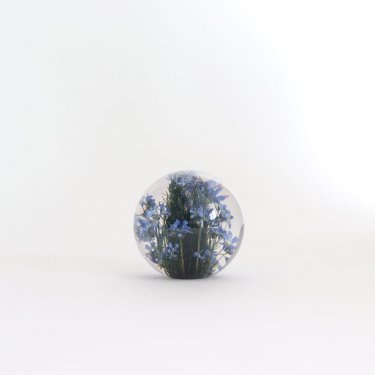 HAFOD GRANGE - PAPERWEIGHT S #FORGET ME NOT [HGPW1-006]