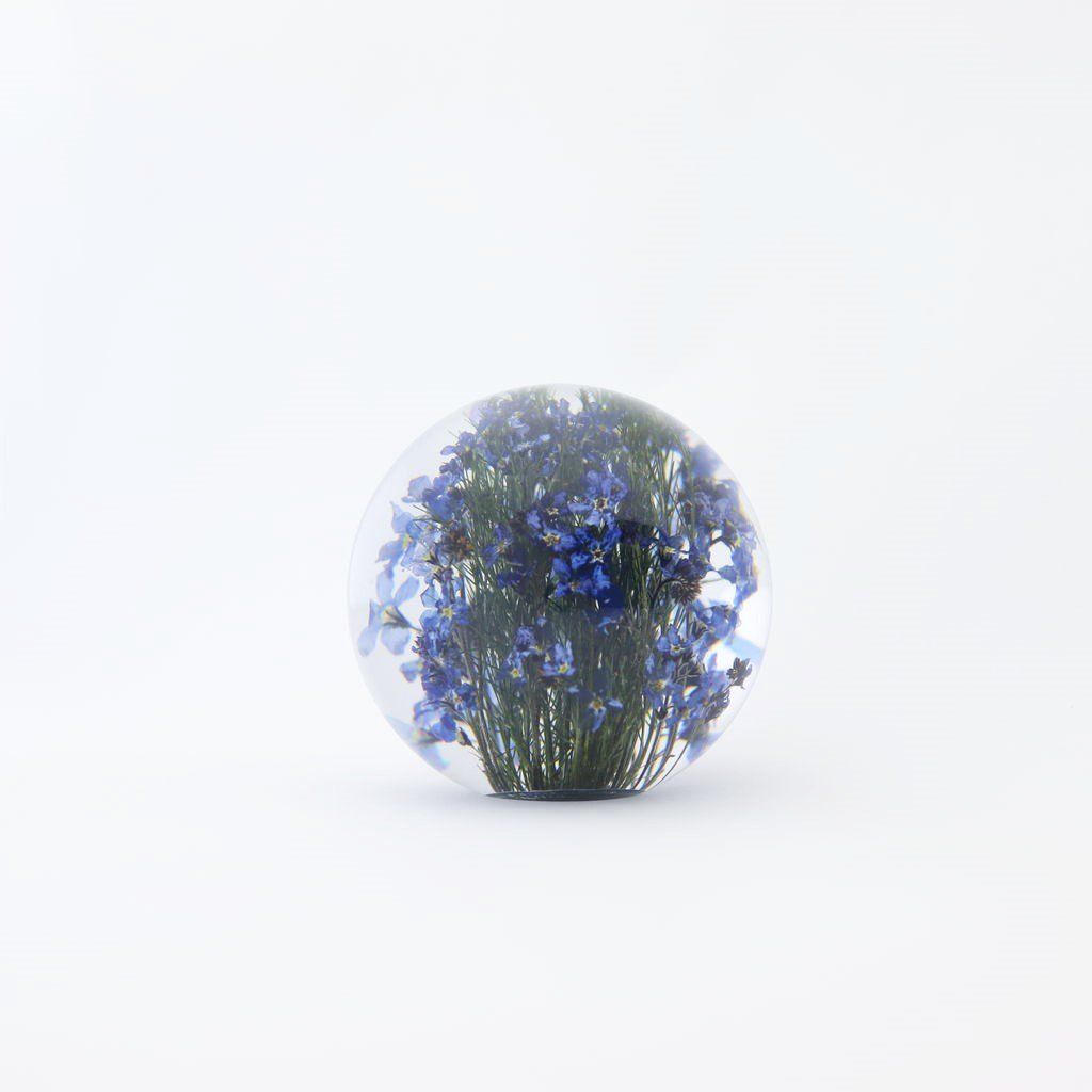 HAFOD GRANGE - PAPER WEIGHT SMALL #FORGET ME NOT [HGPW1-006]