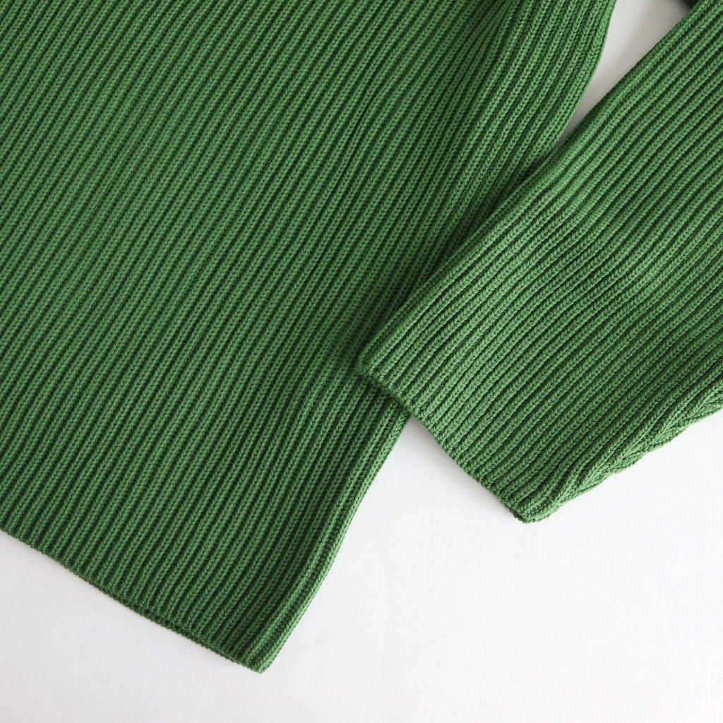 SUPER FINE WOOL RIB KNIT TURTLE NECK BIG P/O #GREEN [A9AP06RK]