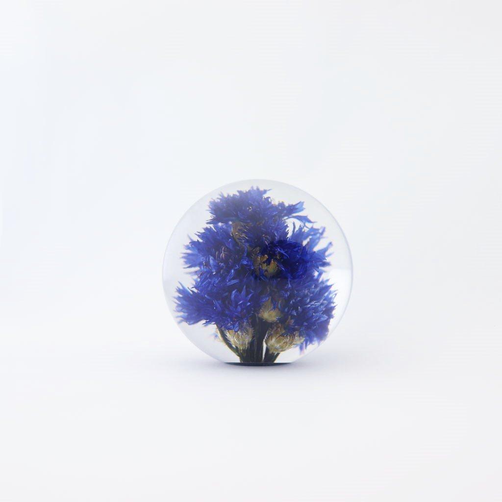 HAFOD GRANGE - PAPER WEIGHT SMALL CORNFLOWER #ONE [HGPW1-005]