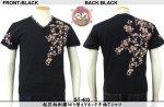 【花旅楽団】桜花柄刺繍半袖VネックTシャツ ST-403 ブラック/アイボリー