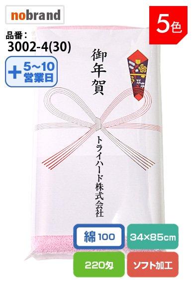 【のし紙に社名印刷します!】『御年賀』タオル ソフト加工のふんわかタオル 重さ220匁!名刺ホルダー付袋