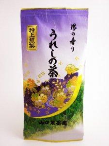 H810 売れ筋No.1!九州産佐賀県【嬉野特上煎茶】100g入 ※ネコポス・郵便レターパック可