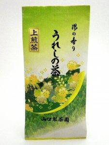 H813 人気の上煎茶!九州産佐賀県【嬉野上煎茶】100g入 ※ネコポス・郵便レターパック可