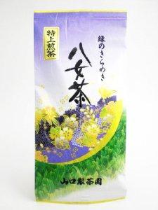 H907 甘味とコクがある!九州産福岡県【八女特上煎茶】100g入 ※ネコポス・郵便レターパック可