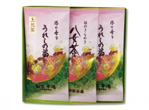 H365 九州銘茶3本入 佐賀県産・嬉野茶、福岡県産・八女茶詰合せ
