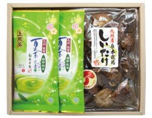 H150 夏茶だより(嬉野茶)&九州産椎茸詰合せ