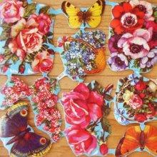 ドイツ クロモス お花と蝶 14枚セット