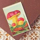 ハンガリー 切手型きのこシート kiralyvarganya