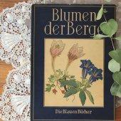ドイツ 植物図鑑 山の花/Blumen der Berge