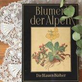 ドイツ 植物図鑑 アルプスの花/Blumen der Alpen