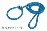 柴犬カラフルリード スカイブルー(引き綱)