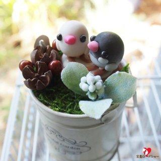 【ベストセラー】粘土作家 Happi Happi ピーちゃんバケット【白文鳥&桜文鳥】木の実を添えて*小鳥のインテリア