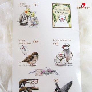 医療系雑貨生みたて卵屋・切手風シール「小鳥医院の仲間たち」看護師さんの文鳥・セキセイ・オカメetc