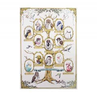 医療系雑貨生みたて卵屋・A3ポスター「小鳥医院組織図」看護師さんの文鳥・セキセイ・オカメetc