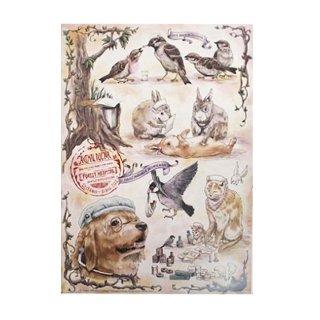 医療系雑貨生みたて卵屋・A3ポスター「動物のお医者さん」看護師さんの文鳥・スズメetc