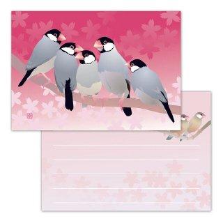 とりアート【春文鳥】メモ帳 * 桜の花・桜文鳥グラデーションピンク