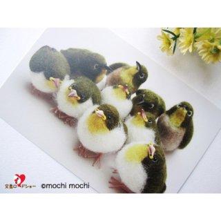 【残り僅か!】「もちもちメジロいっぱい」mochi mochi nao' おとりさんズポストカード