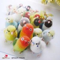 「インコ&文鳥たち大集合写真」mochi mochi nao' おとりさんズポストカード