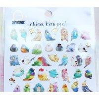 【生産終了・ラス1!】文鳥・インコetc.小鳥大集合の透明シール*Chima Kira Seal/チマキラシール・バード
