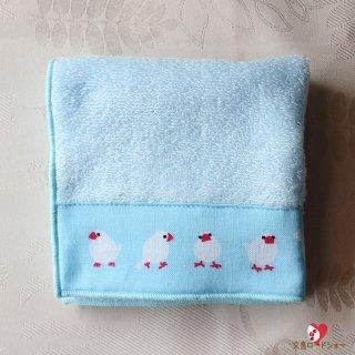 濱文様「文鳥並べ・Tenuguiたおる」23cm×23cm*文鳥の手ぬぐいタオル*爽やかな水色/ギフトにふさわしい日本製