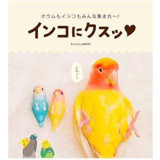 インコフォト・ハンドブック【オウムもインコもみんな集まれ~!】インコにクスッ*Birdstory編集部