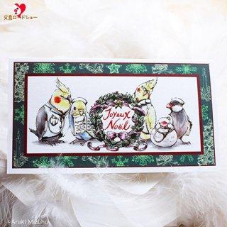 【残り僅か!】医療系雑貨生みたて卵屋・クリスマスカード「小鳥医院の仲間たち」看護師さんの文鳥・セキセイ・オカメetc